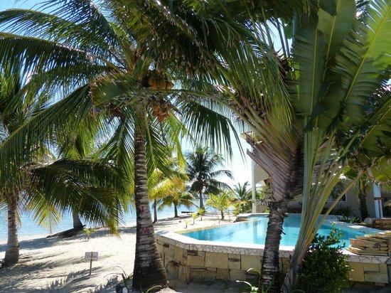 Los Porticos Villas: Pool on the Beach