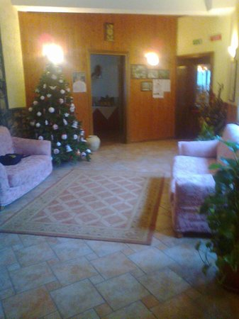 Albergo del Sole : Reception