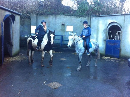 Cooper's Hill Equine : Seamus and Molly