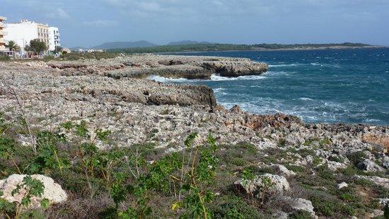 Protur Palmeras Playa Aparthotel : S'illot