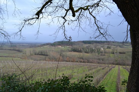 French Wine Adventures - Day Tours: view from farm