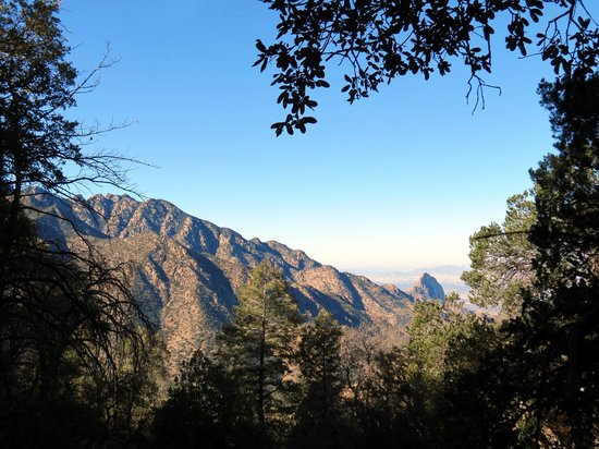 Madera Canyon: A view from one of the trails