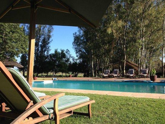 Savannah Game & River Retreat: Next to the swimming pool