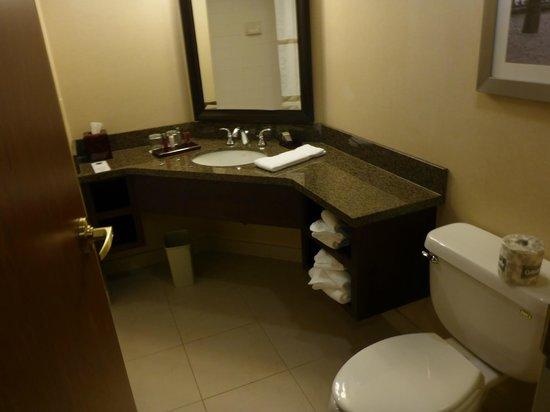Niagara Falls Marriott Fallsview Hotel & Spa: Gorgeous bathrooms