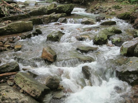 Delaware Water Gap National Recreation Area: Along the Dunnfield Trail