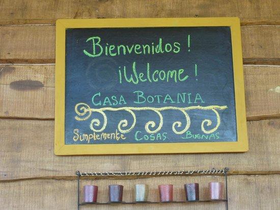 Casa Botania Bed & Breakfast: Terraza