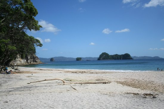 Hahei Holiday Resort: stunning Hahei beach
