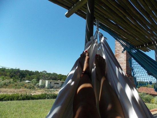 Jenous Hostel: hamaca paraguaya en la terrazita con piso/pasto
