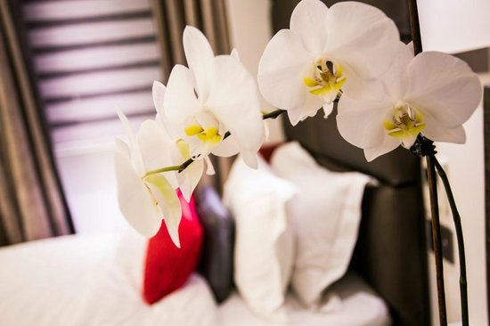 Henley House Hotel: Guestroom- Detail