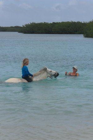 Horse Ranch Bonaire: Simone Juliana and Rosa