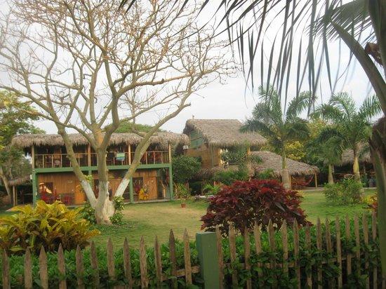 Hostal Kundalini : zona  verde del hostal
