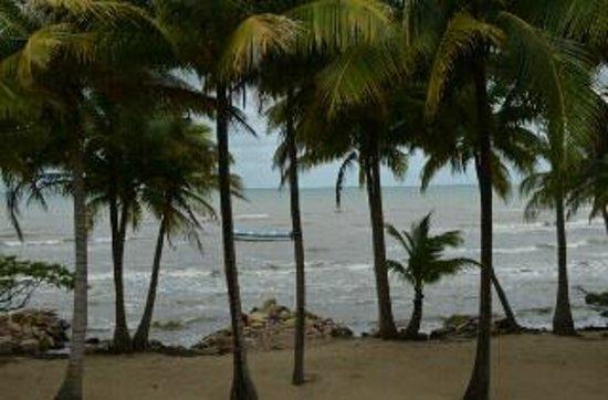 Pelican Beach - Dangriga : Pelican Beach Resort