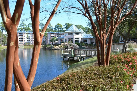 Marriott's SurfWatch : Grounds and Pond