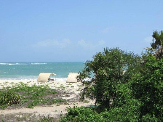 Ras Kutani: Beach Palapas