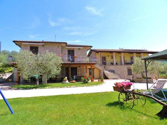 Agriturismo la rocca assisi hotel rocca sant 39 angelo - Il giardino dei ciliegi assisi ...