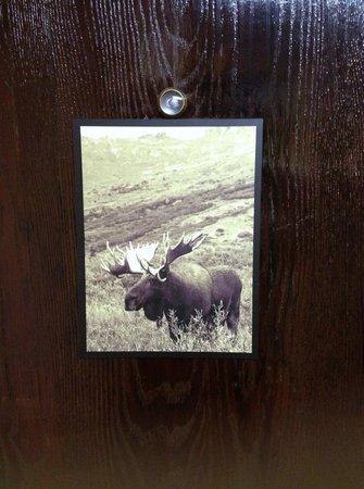 Comfort Inn Ship Creek : Moose on door