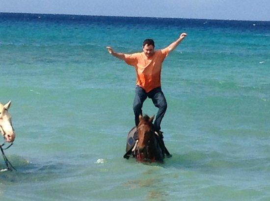 Equus Rides: Equus St. Croix January 2014
