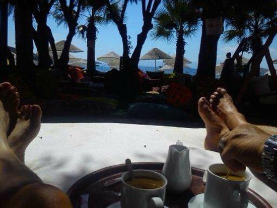 Safir Hotel : Bitez strand