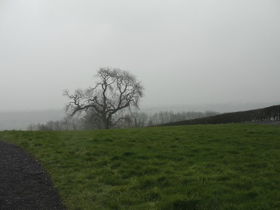 Mary Gibbons Tours: Hill of Tara
