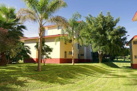 Vista Junior Guadalajara: Jardines