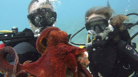 Kaimana Divers: My daughter and I with octopus