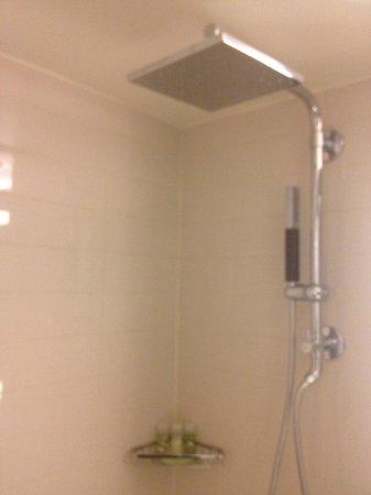 The Westin Portland Harborview: Shower