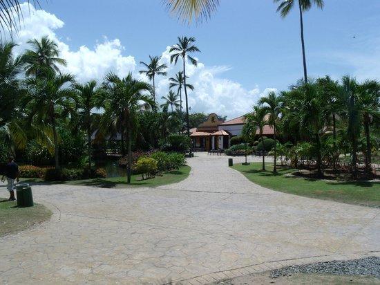 Caribe Club Princess Beach Resort & Spa: vista da varanda