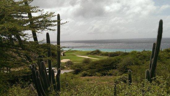 Santa Barbara Beach & Golf Resort, Curacao : Uitzicht op zee vanaf het grote landgoed