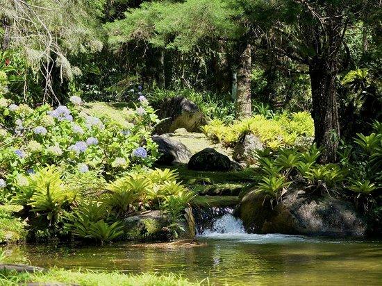 Villa Sao Romao: Piscinas Naturais