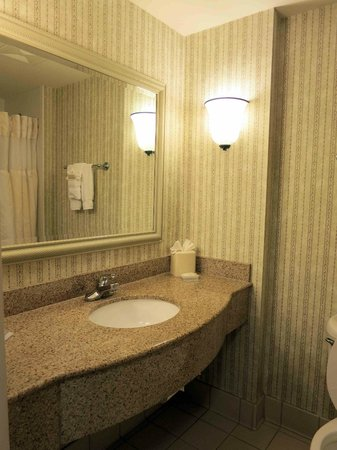 Hilton Garden Inn Charleston Airport: Room 519 Bathroom