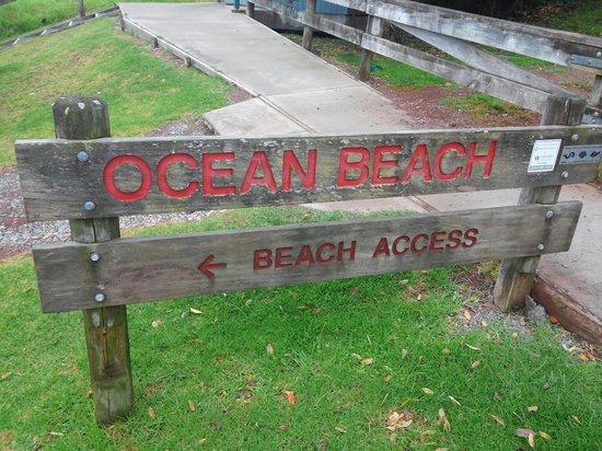 Ocean Beach: board