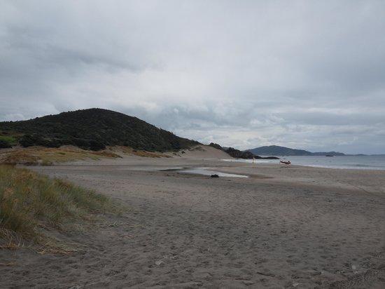 Ocean Beach: beach