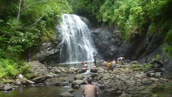 Koro Sun Resort and Rainforest Spa : Waterfall on trip to village