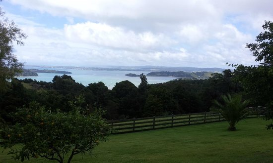 Kauri Villas: View from front deck