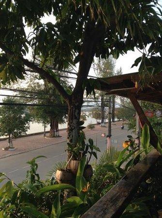 Rikitikitavi: Lovely view from restaurant