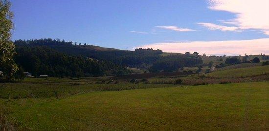 Views in Wilmot