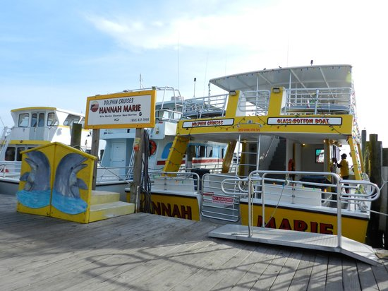 Olin Marler Fishing and Dolphin Cruises: This was our boat