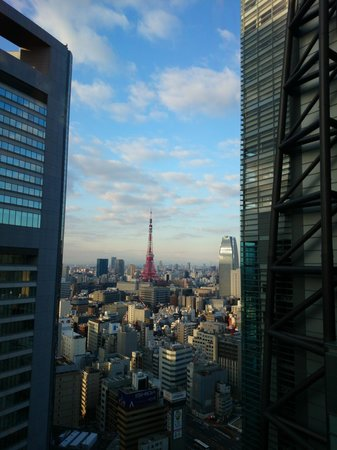 Royal Park Hotel The Shiodome, Tokyo: Tokyo Tower view from restaurant