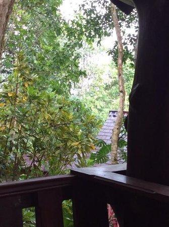 Khao Sok Las Orquideas Resort : Aussicht vom Balkon