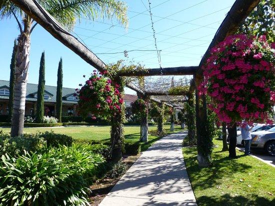 South Coast Winery Resort & Spa: Walkway to tasting room