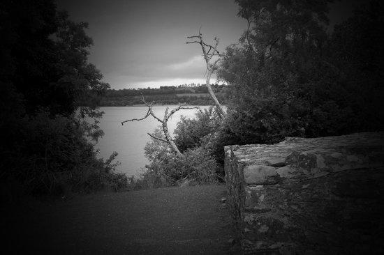 Lough Leane from Innisfallen Island
