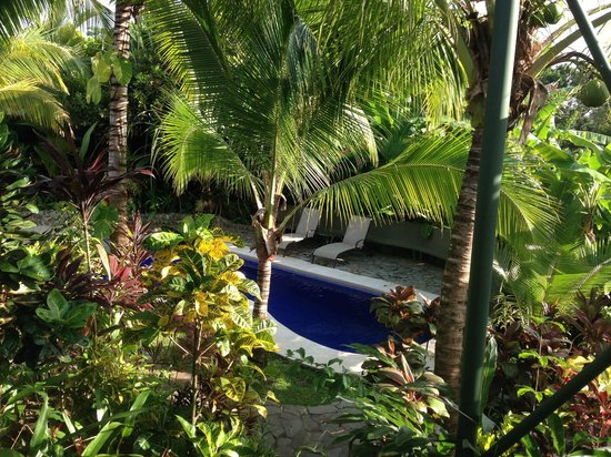 Villas Oasis: Pool from our room