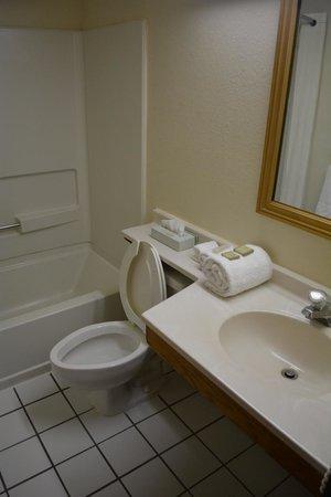 Super 8 Canton/Livonia Area: Bathroom