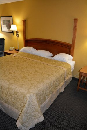 Super 8 Canton/Livonia Area: King Size Bed