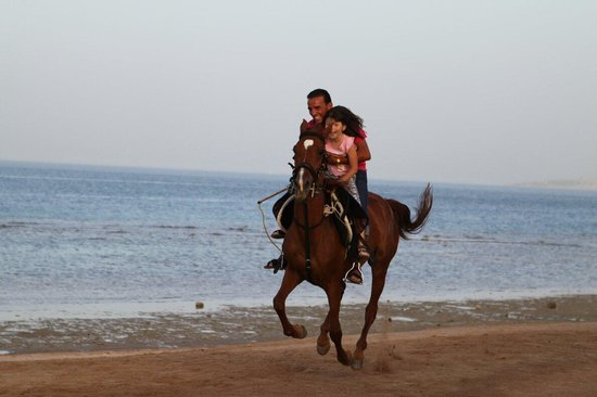 Coral Beach Resort : :))