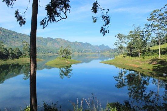 The Farm Resorts : The beautiful view/lake