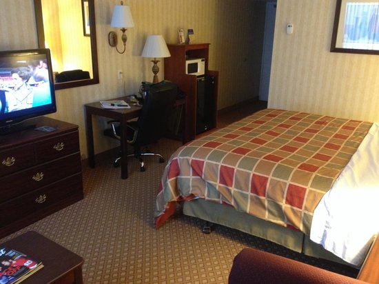 Wyndham Garden Romulus Detroit Metro Airport: Room 2014 flat screen, desk, large fridge and microwave