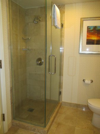 JW Marriott Phoenix Desert Ridge Resort & Spa: comfortable shower