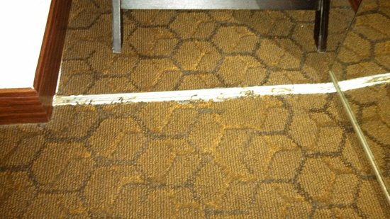 Embassy Suites by Hilton Dallas Near the Galleria: Fraying carpet into closet