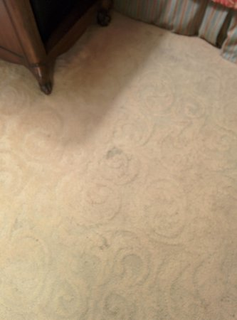 Montecito Inn: Example of stains on carpet